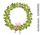 mistletoe wreath isolated on... | Shutterstock .eps vector #224580082