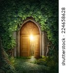 mysterious entrance to new life ... | Shutterstock . vector #224658628