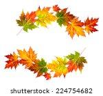 Autumn Maple Leafs On White...