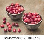 cranberries | Shutterstock . vector #224816278