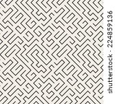 seamless pattern with maze.... | Shutterstock .eps vector #224859136