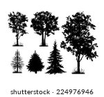 set of silhouettes of trees on...   Shutterstock .eps vector #224976946