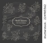 hand sketched vintage floral... | Shutterstock .eps vector #224985562