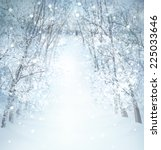 winter wonderland landscape. | Shutterstock . vector #225033646