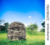Olmec Colossal Head In The...