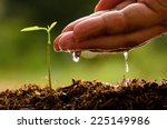 Seed And Planting Concept With...