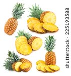 set of 6 pineapple images | Shutterstock . vector #225193588