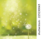 vector spring background with... | Shutterstock .eps vector #225230065