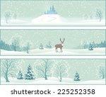 winter christmas landscape...