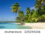 exotic coast of the dominican... | Shutterstock . vector #225254236
