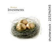 Golden Goose Eggs Placed In A...