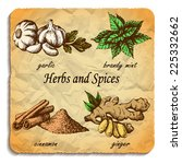 kitchen herbs and spices. hand... | Shutterstock .eps vector #225332662