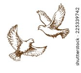 Pair Of Flying Doves. Vector...