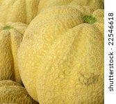 cantaloupe muskmelon | Shutterstock . vector #22546618