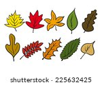 Autumn Leaves Shape In Color