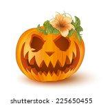 pumpkin on white background  ... | Shutterstock .eps vector #225650455