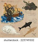 an hand drawn vector pack.... | Shutterstock .eps vector #225749332