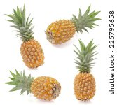 pineapples collection isolated... | Shutterstock . vector #225795658