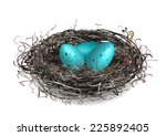 robins nest with 3 eggs in it.... | Shutterstock .eps vector #225892405