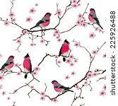 Bullfinches On The Sakura...