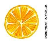 watercolor illustration of... | Shutterstock .eps vector #225936835