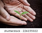 hands holding and caring a... | Shutterstock . vector #226155322