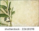 lovely background image with...   Shutterstock . vector #22618198