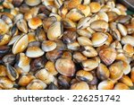 fresh shellfish at the market | Shutterstock . vector #226251742