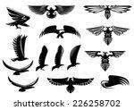 eagle  falcon and hawk birds...   Shutterstock .eps vector #226258702