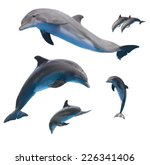 Set Of Jumping Dolphins...