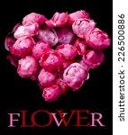 set of heart shaped roses on... | Shutterstock . vector #226500886