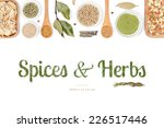 spices and herbs on white... | Shutterstock . vector #226517446