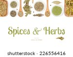 spices and herbs on white... | Shutterstock . vector #226556416