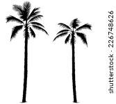 Palm Tree   Black Silhouettes ...