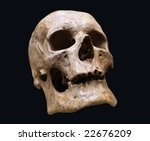 Human skull on black background. Closeup - stock photo