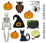halloween elements drawings... | Shutterstock . vector #226816036
