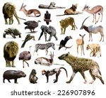 Hyena And Other African Animal...