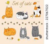 Set Of Cute Cats
