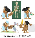 set owl doctor and mouse....