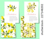 set of invitations with floral...   Shutterstock . vector #227148202
