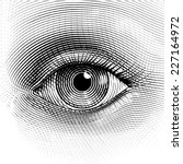 vector human eye in engraved... | Shutterstock .eps vector #227164972