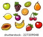 fruit set. vector illustration. | Shutterstock .eps vector #227209048