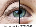 old eye and young eye | Shutterstock . vector #227233042