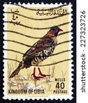 Small photo of LIBYA - CIRCA 1965: a stamp printed in Libya shows Libyan Barbary Partridge, Alectoris Barbara, Bird, circa 1965