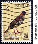Small photo of LIBYA - CIRCA 1965: a stamp printed in Libya shows Libyan Barbary Partridge, Alectoris Barbara, Bird, circa 1965