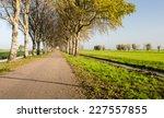 Dutch Polder Landscape In The...