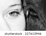 Eyes Of Girl And Horse In Blac...