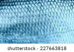 Asp Fish Scales  Natural...
