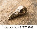 Crow Skull On Wooden Backgroun...