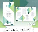 brochure design template... | Shutterstock .eps vector #227709742